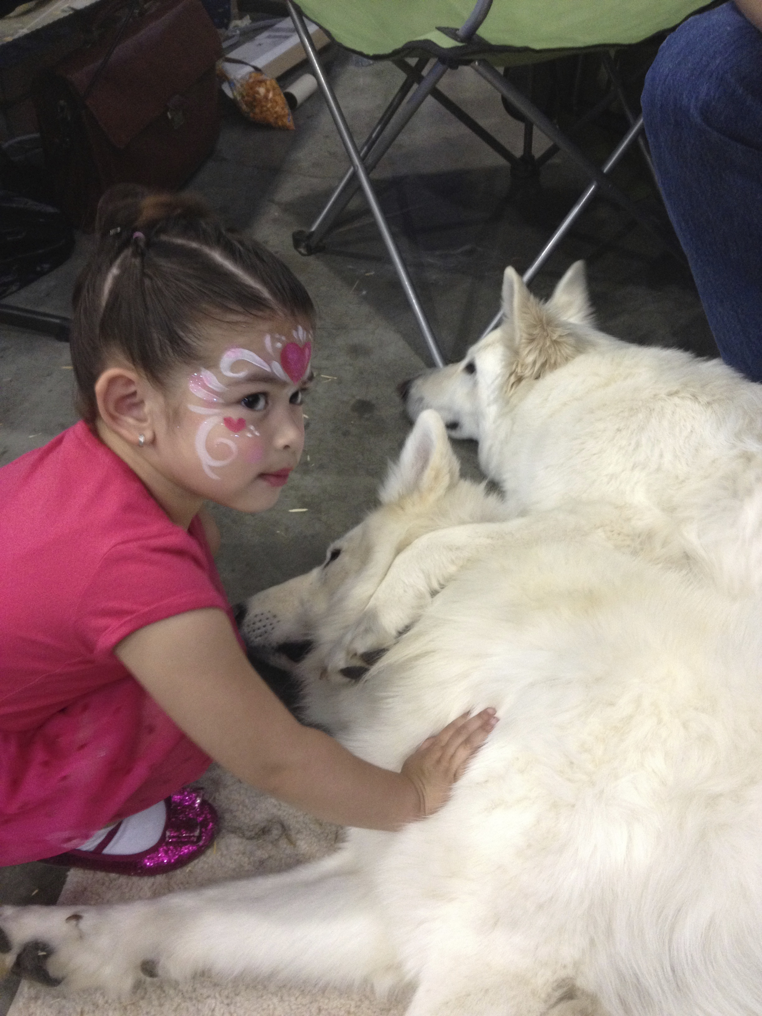 Berger Blanc Suisse with Kids